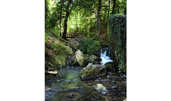 Nature et ruisseau à la brèche au diable